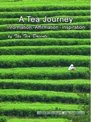 00-tea-field-cover-page-jpg
