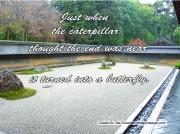 25-zen-rock-garden-jpg