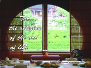 40-tea-window-jpg