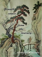 47-growth-comes-from-the-journey-jpg