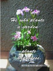 63-flower-in-vase-jpg