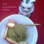 Stay Fit Green Tea Ice Cream