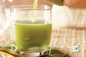 Green Tea Mixer