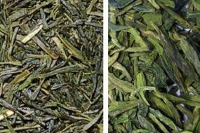 Chinese and Japanese green tea, what's the difference?